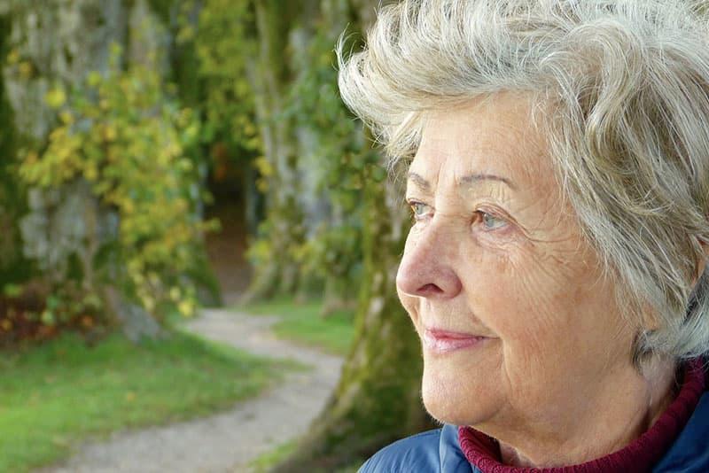 cuales son las modalidades de pensiones